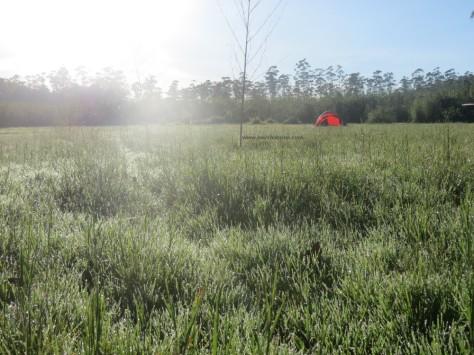 Ranca Upas camping ground